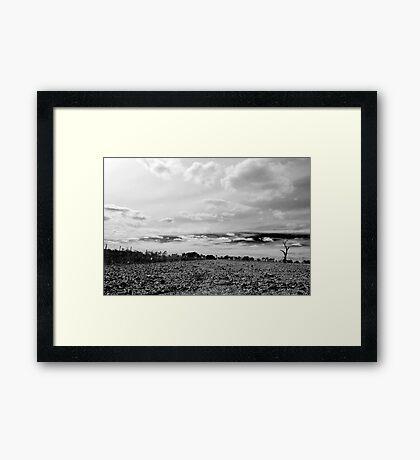 untitled #201 Framed Print