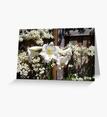 Daffodils - 21 11 12 Greeting Card