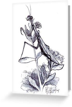 praying mantis hand illustrated schoolbook print by veerapfaffli