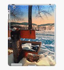 View into winter scenery iPad Case/Skin