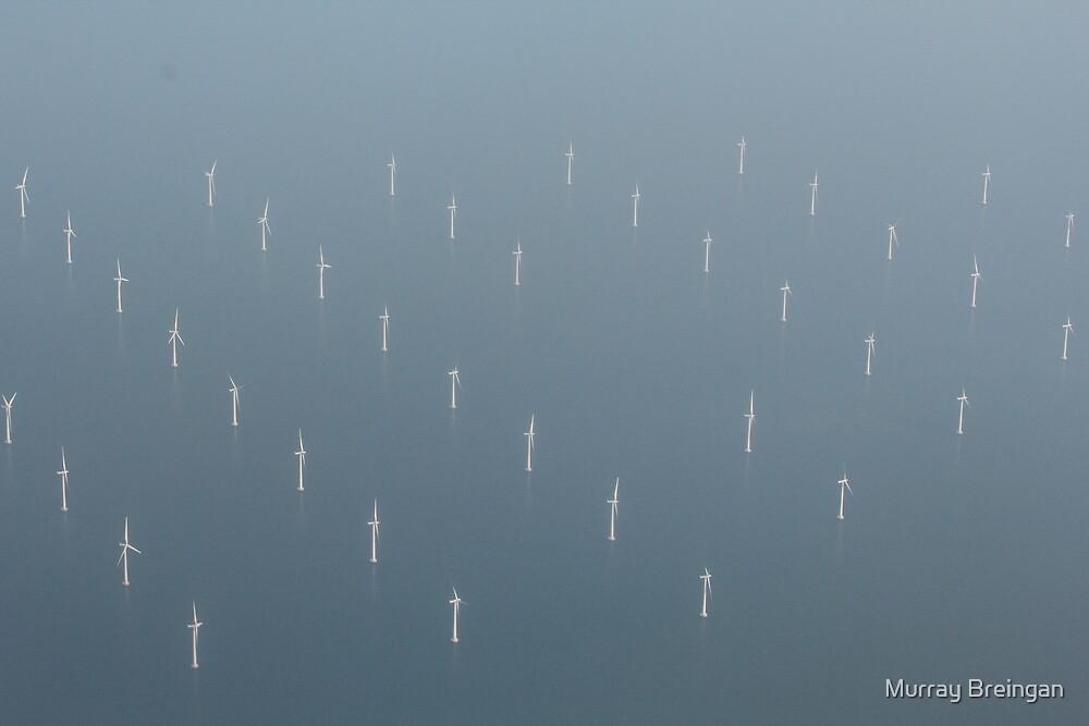 Between Denmark and Sweden by Murray Breingan