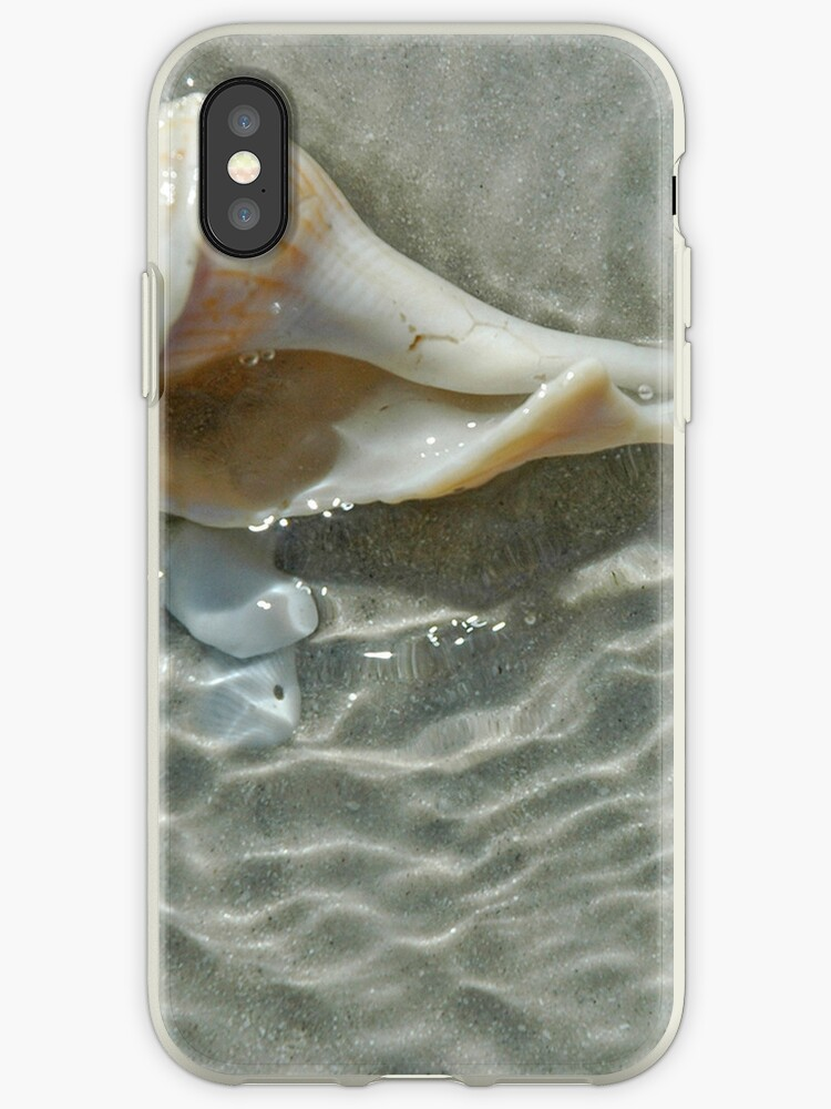 Sea Shell in the Tide by pjwuebker