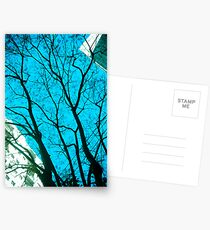 Tree in the Sky [ iPad / iPod / iPhone Case ] Postcards