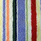 Colorful Terry Cloth Towel by pjwuebker