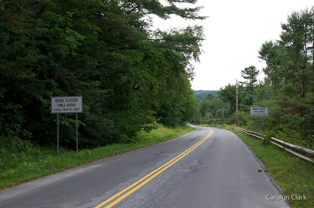 Road signs by Carolyn Clark