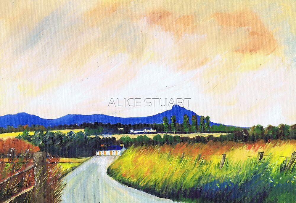 Monymusk Road by ALICE STUART