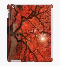 Red Lace iPad Case/Skin