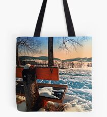 View into winter scenery Tote Bag