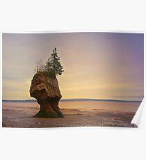 Hopewell Rocks New Brunswick Canada Poster