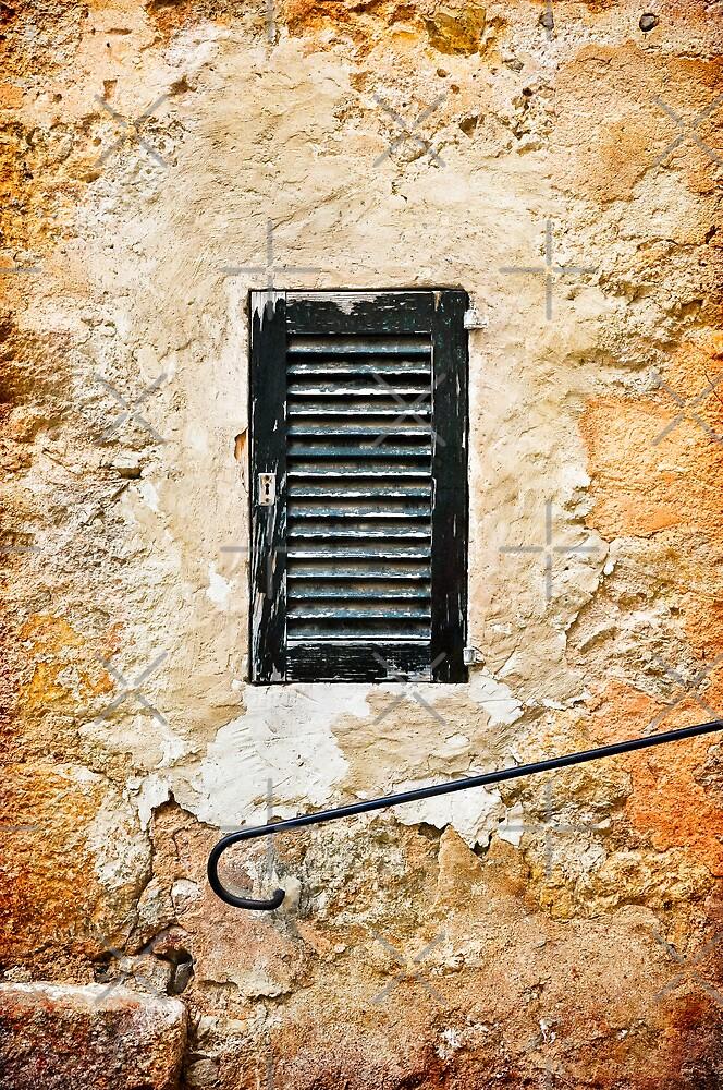 The Little Door by marina63