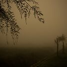 NOVEMBER FOG  I by June Ferrol