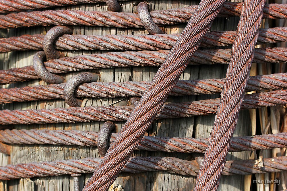 Iron Cables by marybedy