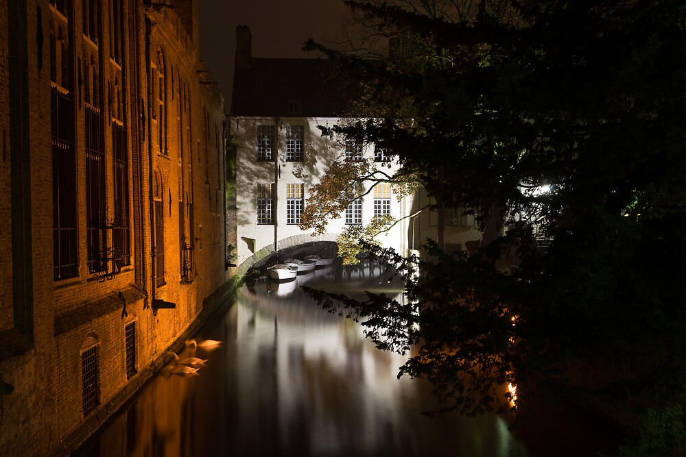 Night Canal, Brugge Belgium by Terry  Berman