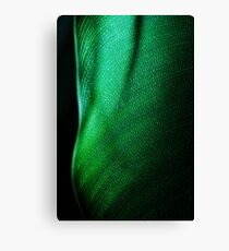 Green Two Canvas Print
