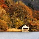Rydal Water. Evening.  by Irina Chuckowree