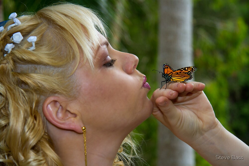 Butterfly Kisses by Steve Bass