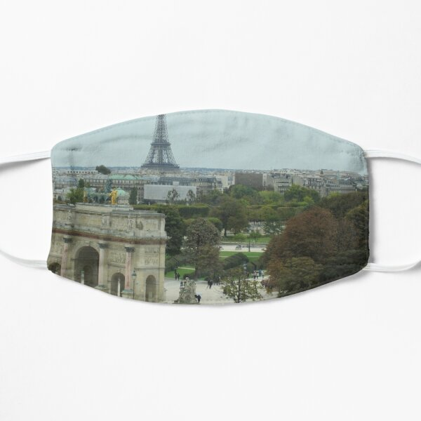 Paris View From the Louvre Museum Mask