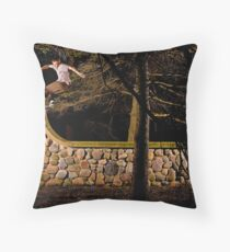 Tom Gallagher - Front Rock - St Charles, IL - Photo Bart Jones Throw Pillow