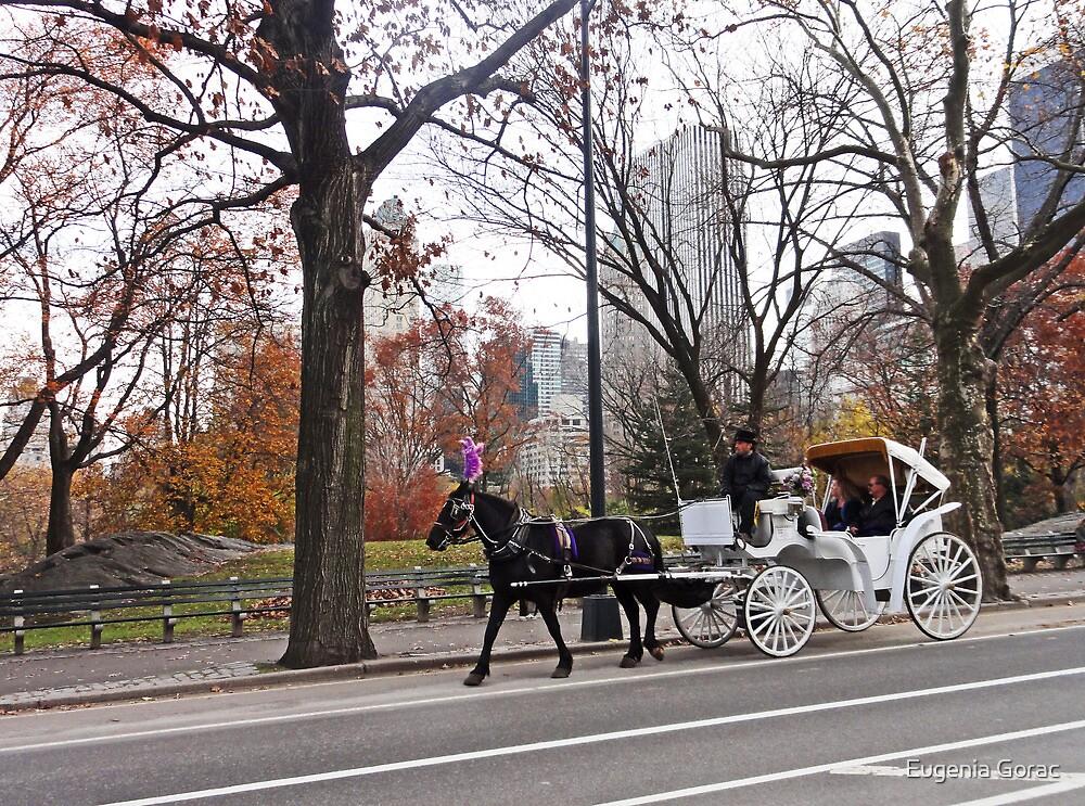 Fall carriage by Eugenia Gorac