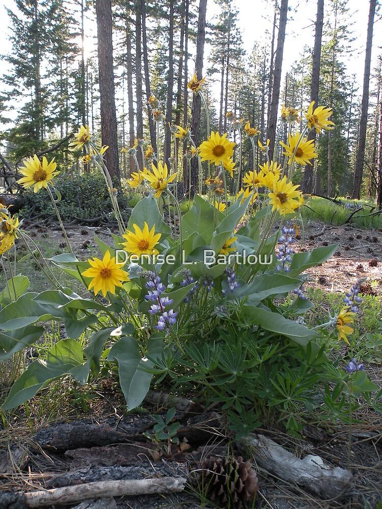 Nature's Boquet by Denise L. Bartlow
