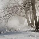 My Secret Winter by Gregory J Summers