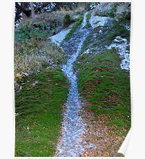 waterfall macro Poster