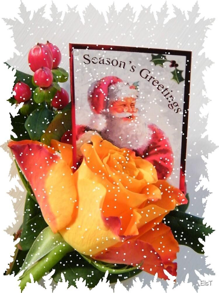 Christmas Greetings by ElsT
