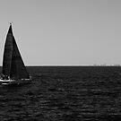 Sailing Home by liza1880