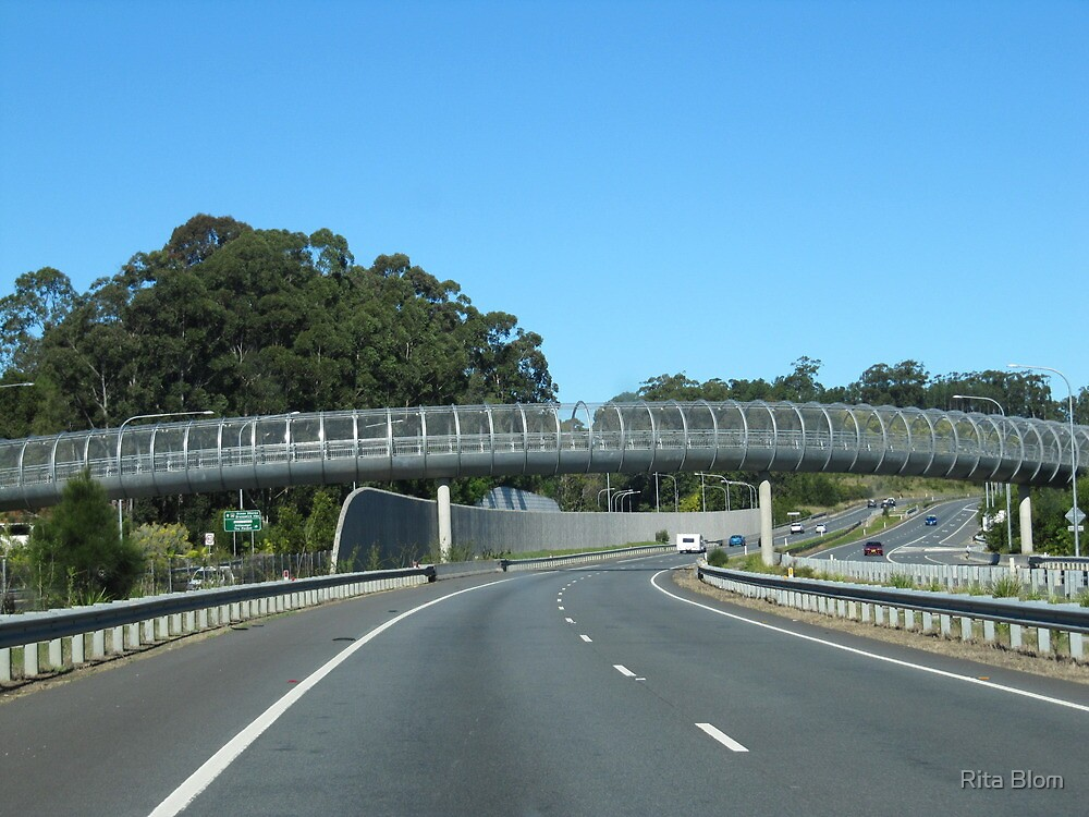 Well constructed pedestrian overway. Pacific Hgwy. North coast N.S.W. by Rita Blom