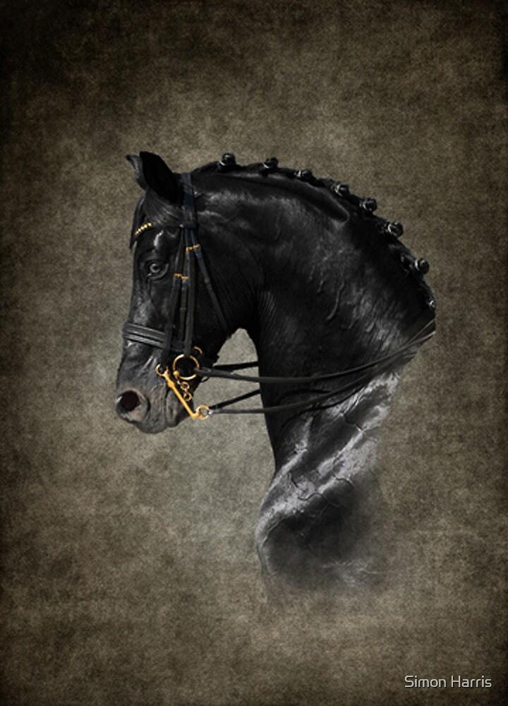 The Black Horse by Simon Harris