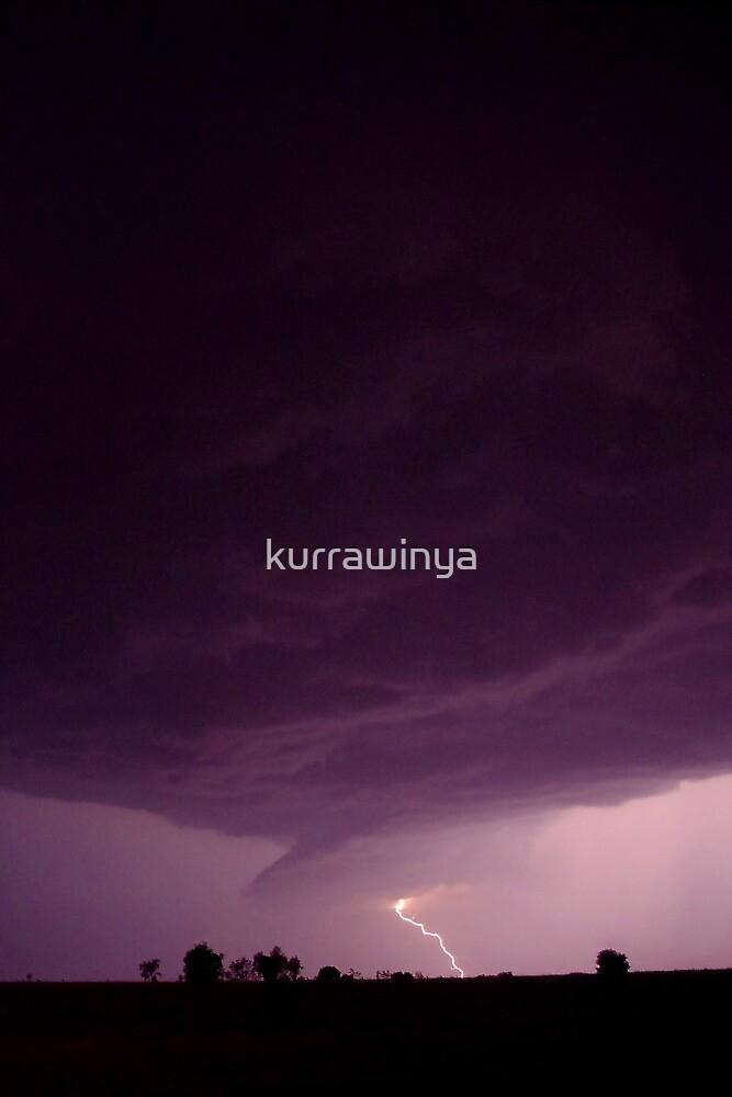 Super-violet by Penny Kittel