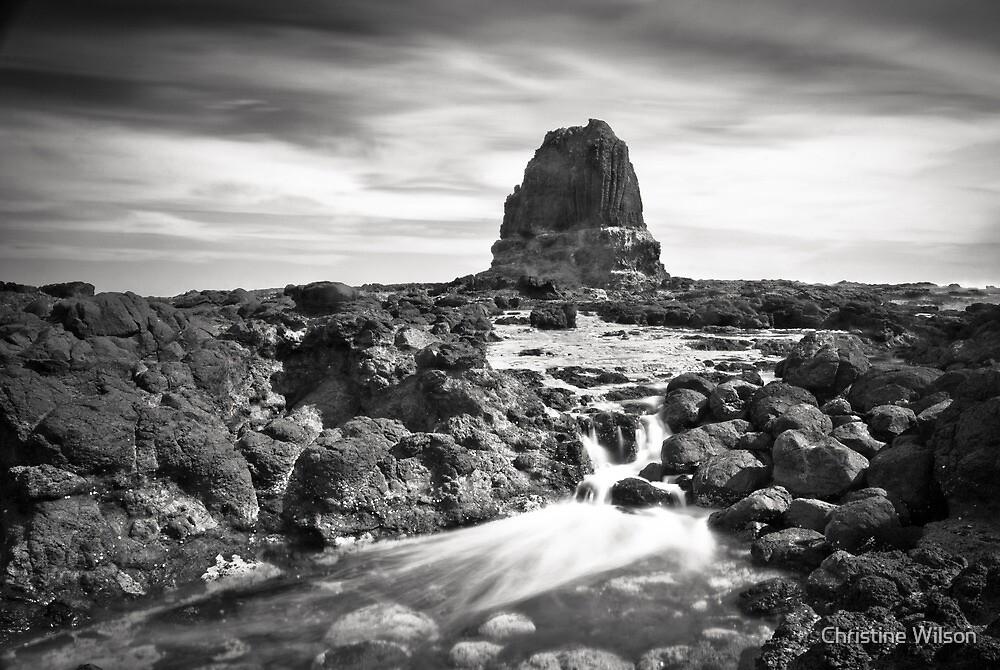 Cape Schanck by Christine Wilson