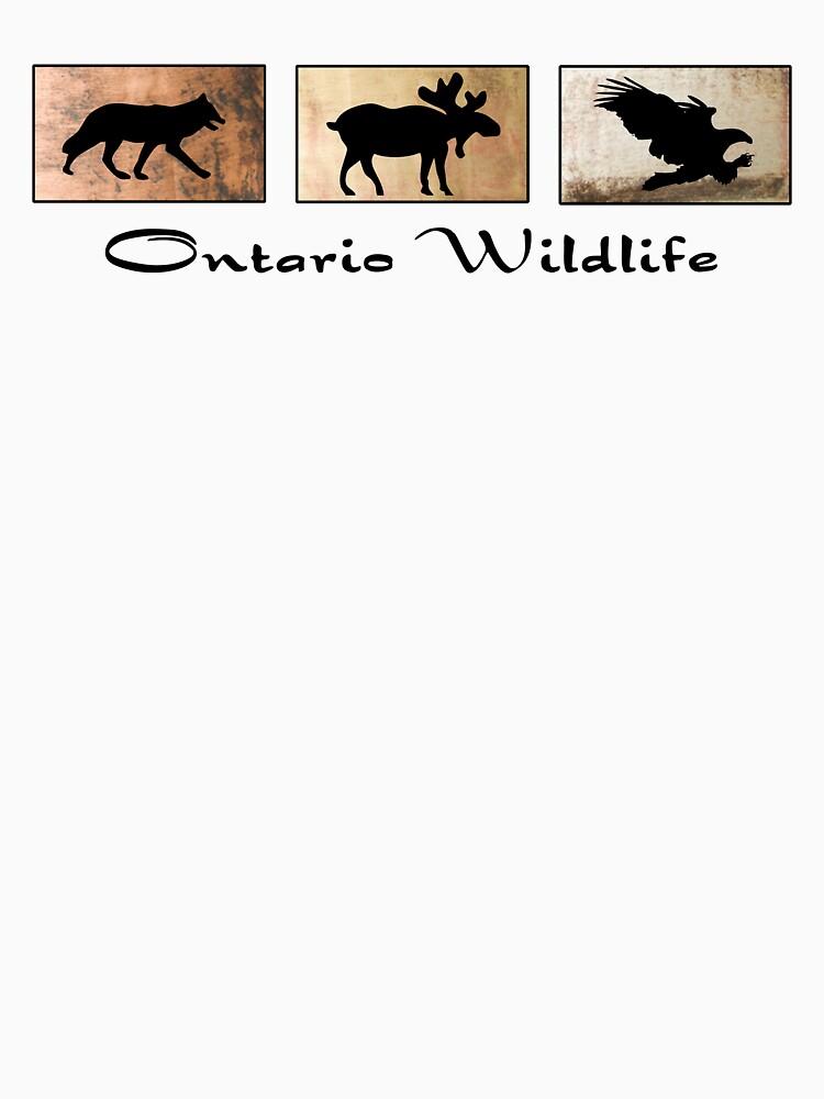 Ontario Wildlife by pjwuebker