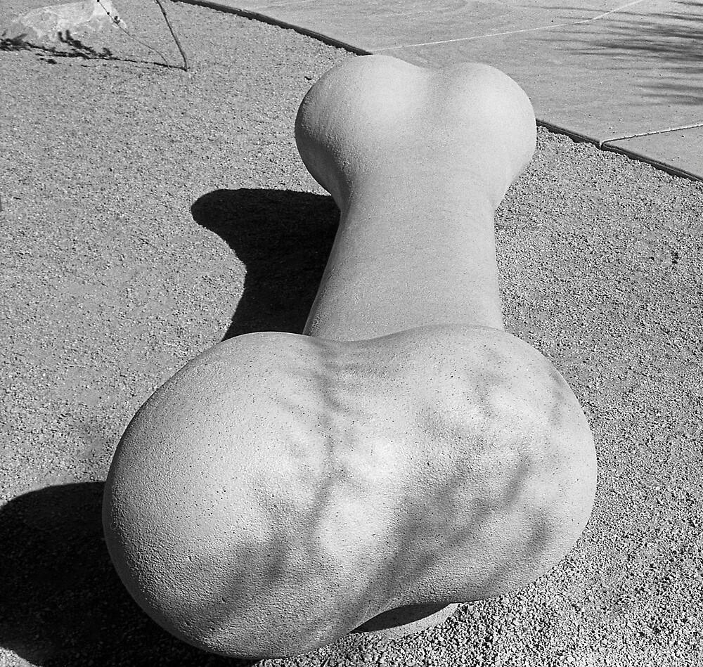 Dog Bone Bench by James2001