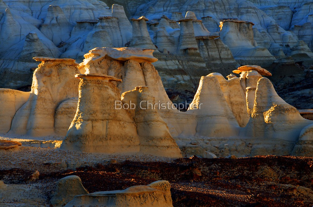 Beauty Of The Bisti/De-Na-Zin Wilderness by Bob Christopher