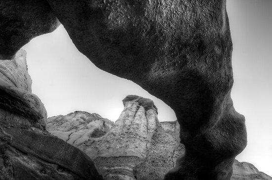 Arch Bisti/De-Na-Zin Wilderness Monochrome by Bob Christopher