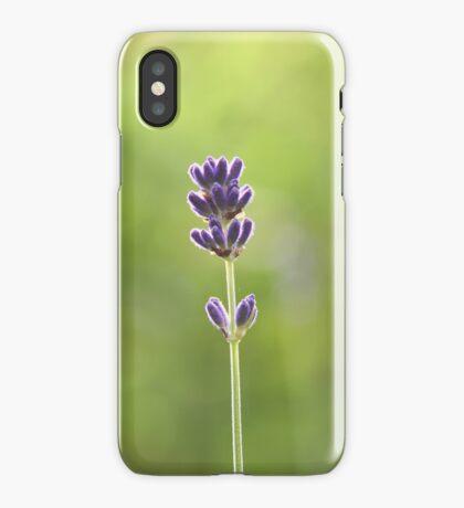 Purple Velvet iPhone Case/Skin