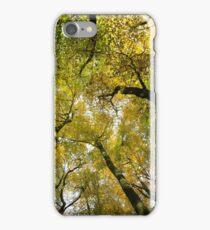 Autumn Gold iPhone Case/Skin