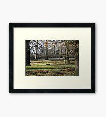 dunham park Framed Print