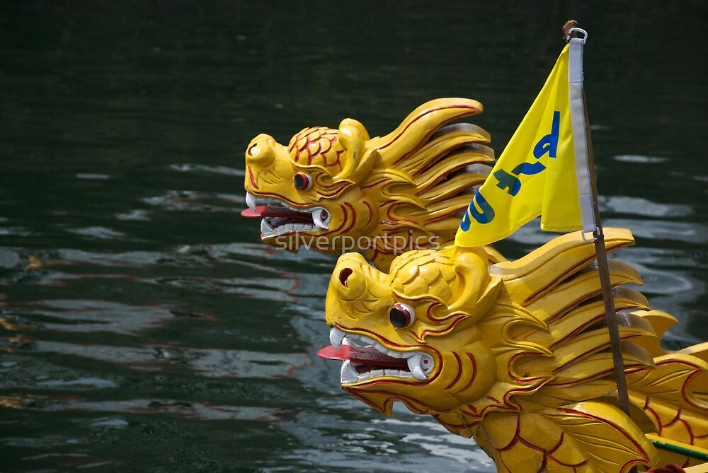 Vietnamese dragon figureheads and bamboo Basket boats, Brest 2008 Maritime Festival, France by silverportpics