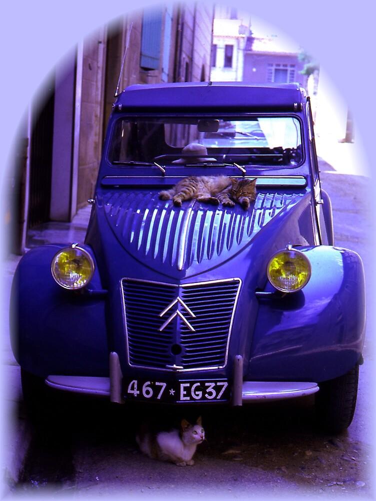 CATS LOVE CITROEN 2CV DEUX CHEVEUX CAR - blue by KenAlex