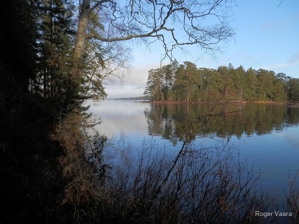 Lake Alkvettern by Roger Vaara