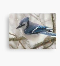 A Blue Gray Day Canvas Print