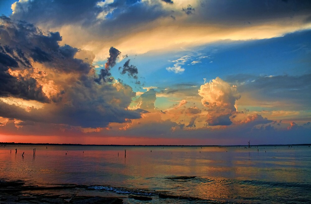 A Rainbow Of Colors by Carolyn  Fletcher