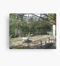 Dodgems/bumper cars, Chernobyl exclusion zone Canvas Print