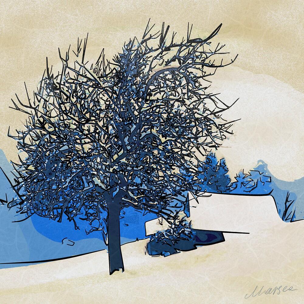 Color of winter by Marsea