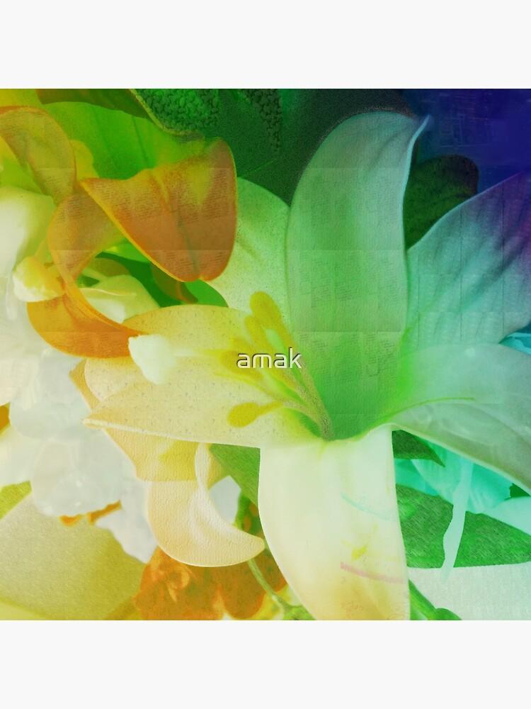 Texturized Flowers by amak