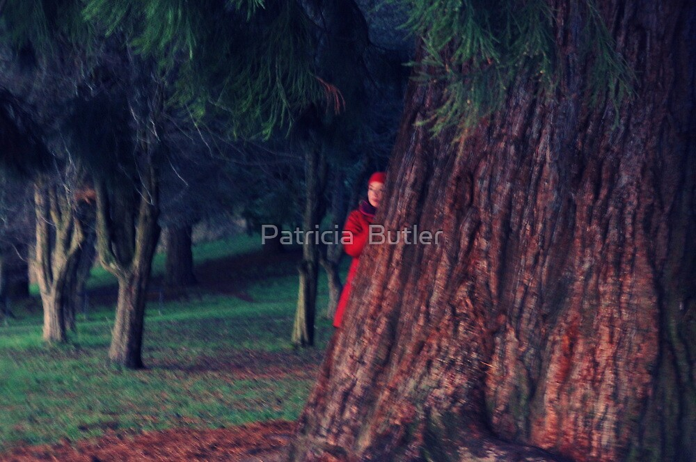 Lady in Red by Patricia  Butler