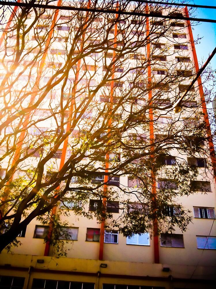The tree and the building [ iPad / iPod / iPhone Case ] by Mauricio Santana