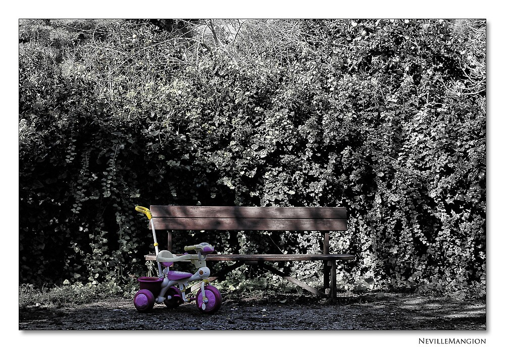 The Trike by NevilleMangion
